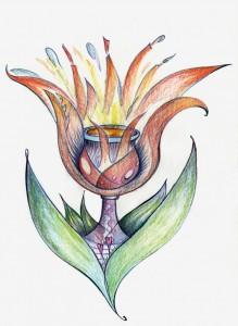 Tulip Grail post